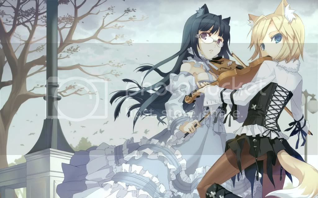 nekos photo konachancom-47569-sample.jpg